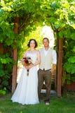 葡萄园婚礼夫妇画象 库存图片