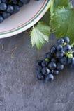 从葡萄园的新鲜的葡萄白色碗的 库存图片