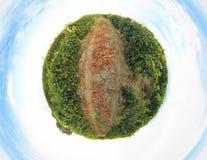 葡萄园行星 免版税库存照片