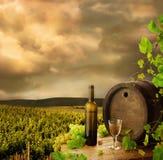 葡萄园酒 免版税库存照片