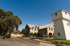 葡萄园银色橡木,加利福尼亚 免版税库存图片