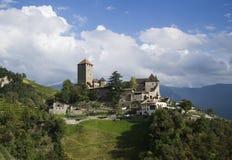 葡萄园围拢的古老城堡 免版税库存照片
