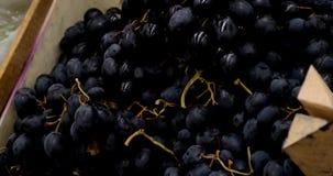 葡萄在常规市场,4k上 股票视频