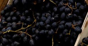 葡萄在常规市场,4k上 影视素材