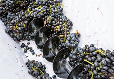葡萄在藤的按,秋天收获 免版税库存图片