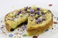 葡萄干乳酪蛋糕 免版税库存照片