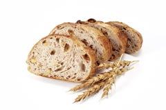 葡萄干面包 库存图片