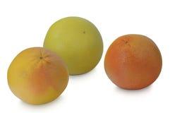 葡萄柚、桔子和柚在白色背景 免版税库存照片