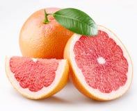 葡萄柚叶子细分市场 免版税库存图片