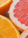 葡萄柚和桔子 免版税库存照片