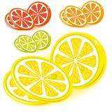 葡萄柚图标柠檬石灰桔子集 免版税库存图片