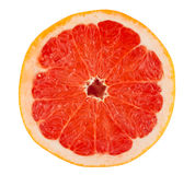 葡萄柚成熟片式 库存图片