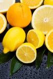葡萄柚柠檬桔子 免版税库存照片