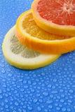 葡萄柚柠檬orage 库存图片
