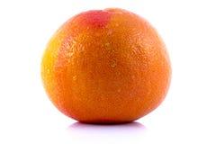 葡萄柚查出的桃红色白色 免版税库存图片