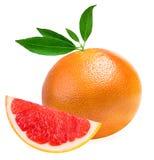 葡萄柚查出的白色 免版税库存照片