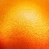 葡萄柚桔子纹理 免版税库存照片