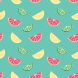葡萄柚石灰柠檬切片 库存图片