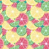 葡萄柚石灰柠檬 库存照片