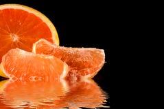 葡萄柚粉红色 免版税库存照片