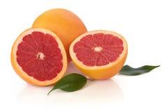 葡萄柚红色红宝石 免版税库存图片