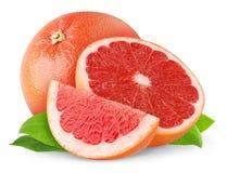 葡萄柚红色 库存图片
