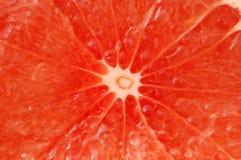 葡萄柚红色 免版税图库摄影