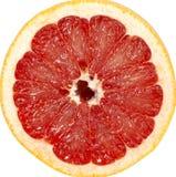 葡萄柚红色 免版税库存照片