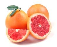 葡萄柚细分市场 免版税库存照片