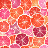 葡萄柚细分市场 库存例证