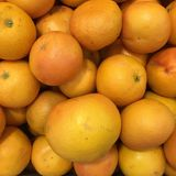 葡萄柚背景 免版税库存照片