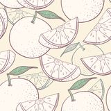 葡萄柚风格化无缝的样式 皇族释放例证