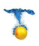 葡萄柚飞溅 免版税库存图片