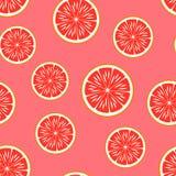 葡萄柚 模式无缝的向量 免版税图库摄影