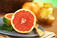 葡萄柚 库存图片