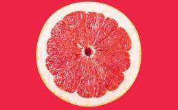 葡萄柚 免版税图库摄影