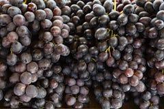 葡萄汤普森,可口红葡萄零售  库存图片