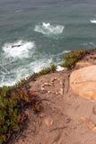 葡萄牙 Cabo da Roca 从石头的心脏在蓝色海洋背景的岩石 垂直的视图 免版税图库摄影
