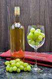 葡萄玻璃 库存照片