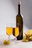 葡萄白葡萄酒 在玻璃的白葡萄酒,瓶酒和 免版税库存图片