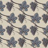 葡萄的无缝的样式 在蓝色 库存照片