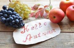 葡萄秋天红色刷子在一个木背景葡萄酒题字问候你好秋天秋天收获离开 免版税库存照片