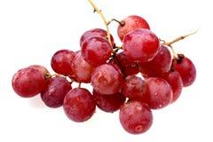 葡萄红色甜点 免版税库存照片
