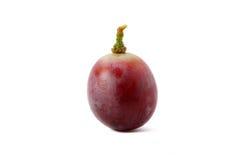 葡萄红色 免版税图库摄影