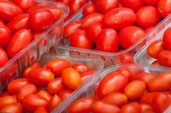 葡萄蕃茄 库存照片