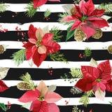 葡萄酒一品红开花背景-无缝的圣诞节样式 免版税库存照片