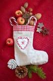 葡萄酒与坚果和苹果的礼物袋子 库存照片