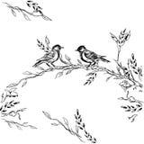 葡萄酒与开花的花和鸟的贺卡 谢谢有地方的您的文本 野花,传染媒介 免版税图库摄影