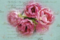 葡萄酒与桃红色郁金香的爱背景在花瓶 免版税库存照片