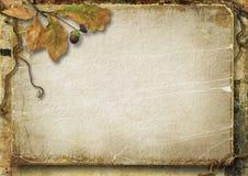 葡萄酒与橡木叶子和橡子的秋天背景 免版税库存照片